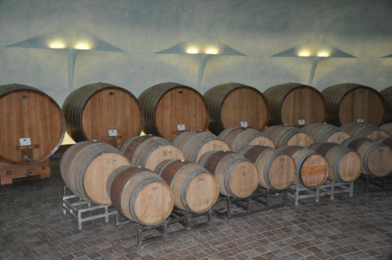 Relais Casamassima: Winery