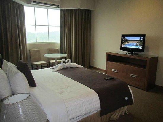 Central Park Hotel : Amplia habitación