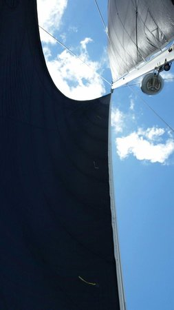 Kekoa Sailing Expeditions: Awesome black sails for the boat!