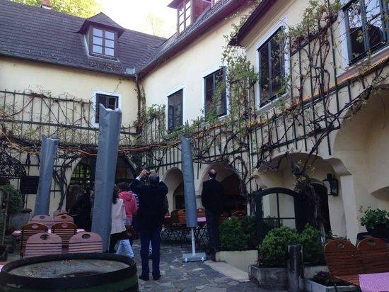 Ottakringer Landhaus : patio