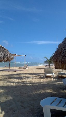 Excellence Punta Cana: beach view