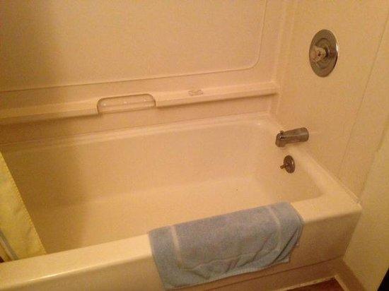Whitetail Inn: Soap & bath mat.