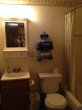 Whitetail Inn: Orange air freshener, worn towels, & plunger.
