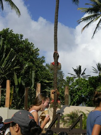 Polynesian Cultural Center: Samoan Show