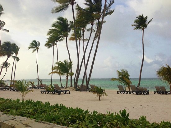 Barcelo Bavaro Beach - Adults Only : beach at adults only