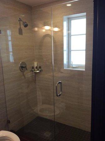 Hotel Croydon: The shower