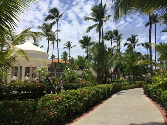 Majestic Colonial Punta Cana : Resort grounds