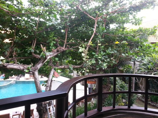 Adhi Jaya Hotel : View from balcony