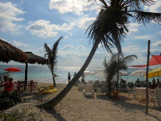 Tropicante Ameri-Mex Grill: A view of Tropicante's beach from the Malecon