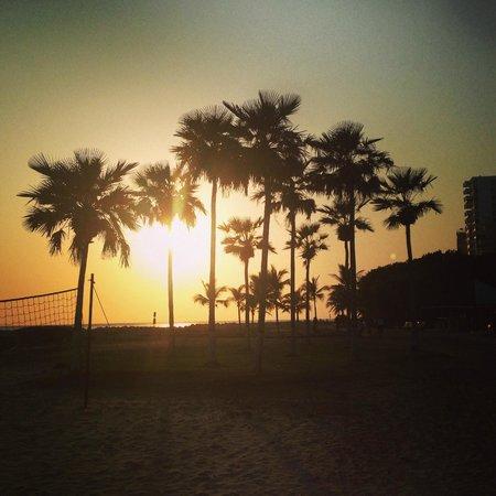 Hilton Cartagena : beach front