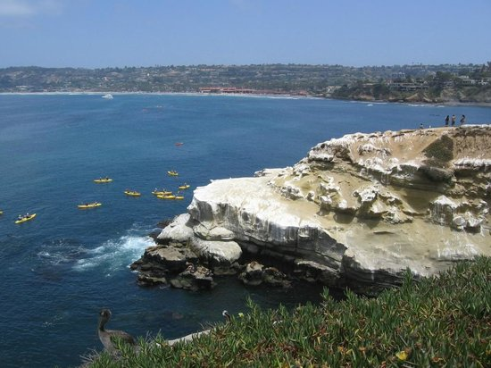 La Jolla Cove: Nice view of La Jolla shores in the distance