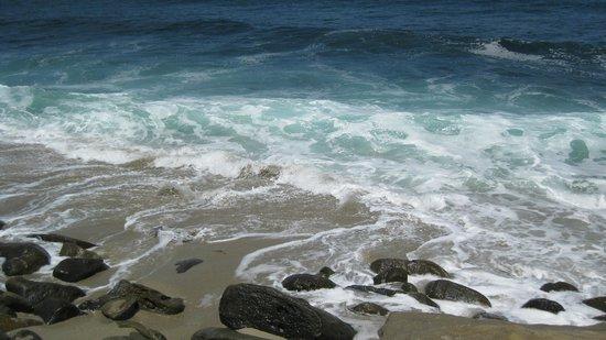 La Jolla Shores Park: La Jolla Shores