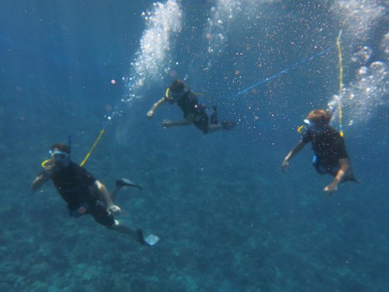 Maui Magic: my sons and I snuba diving at Molokini