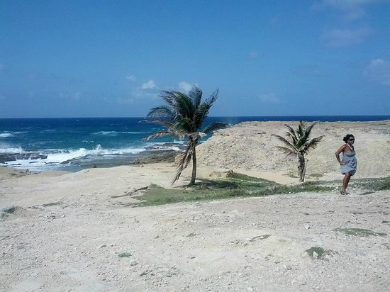 Segway Barbados : Yet another amazing view!