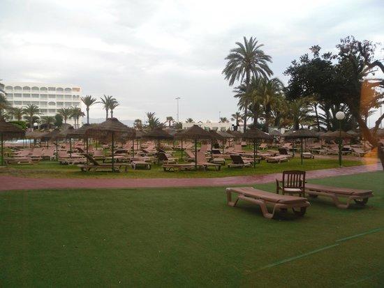 Evenia Zoraida Park: around the large pool