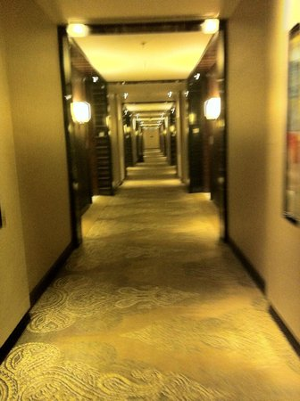 JW Marriott Hotel New Delhi Aerocity: the walkway to room