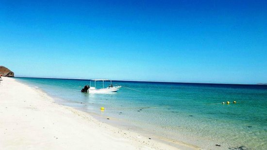 Playa El Tecolote (Tecolote Beach): Playa el Tecolote