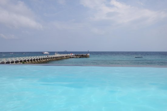 Tunamaya Beach & Spa Resort - Tioman Island: Infinity Pool