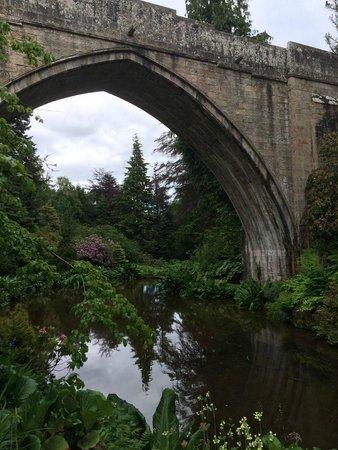 Kildrummy Castle Gardens: Incredible bridge