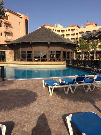 Hotel Elba Sara: Pool and toucan bar