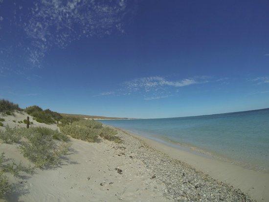 Turquoise Bay : Beach left