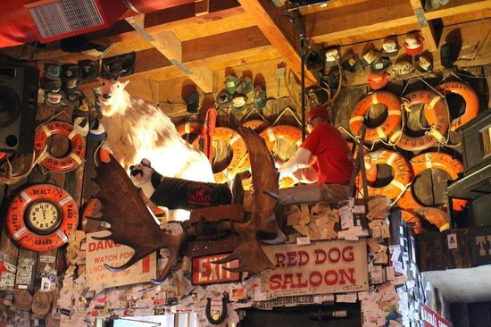 Red Dog Saloon: Inside the Red Dog