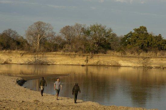 Luangwa River Camp: Walking Safari