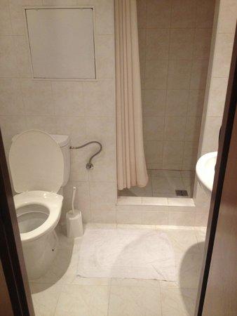 Globus : Вот такой душ в номере. Шторку кстати меняли каждый день. Это намного удобнее душевых кабин.
