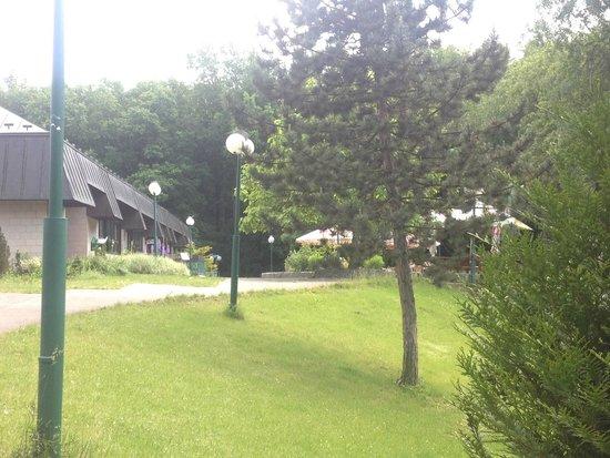Globus : Дворик за отелем. Лес и небольшая детская площадка
