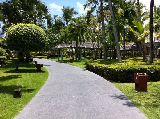 Iberostar Bavaro Suites : the grounds