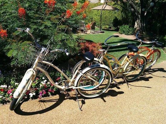 Desert Riviera Hotel: Bikes
