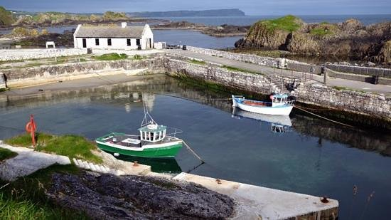 The Whins B&B : Ballintoy harbor