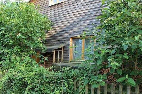 Zwei Eichen - Bed & Breakfast in der Nordheide : Raam van onze kamer