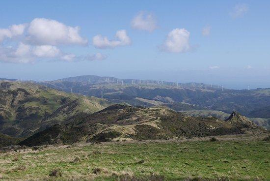 Mount Kaukau: 風力発電