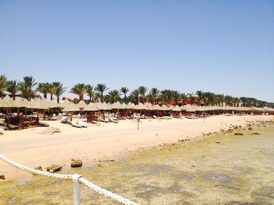 Sharm Grand Plaza : beach
