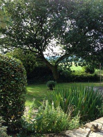 Summer Lodge: Kitchen Garden