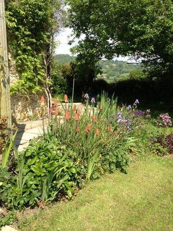 Front Garden - Summer Lodge Devon