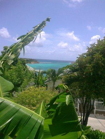 The Verandah Resort & Spa : View from verandah of room 219