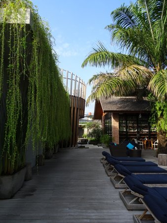 Maca Villas & Spa: Part of the grounds