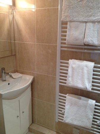 Summer Lodge: Music Room en suite shower room