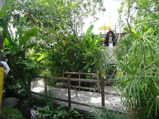 Maca Villas & Spa: Path to our villa