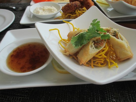 Beach Republic: Tapas: vegetable spring rolls