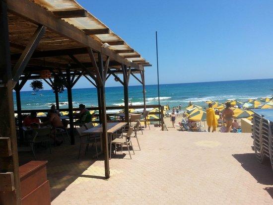 Cactus Royal Resort : Strand / Terras