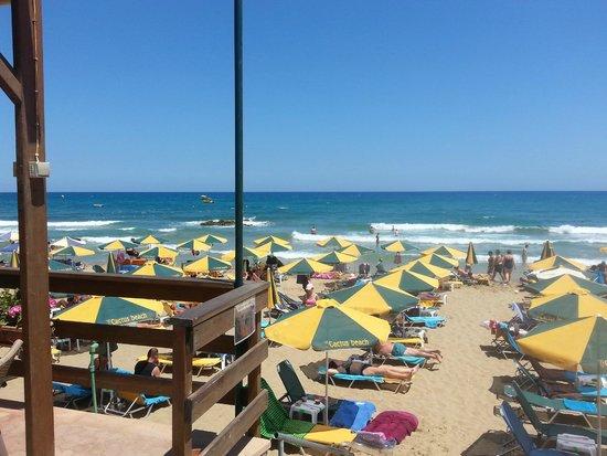Cactus Royal Resort: Strand