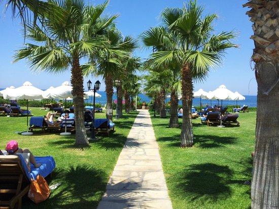 Elysium Hotel: Path through gardens towards private beach.