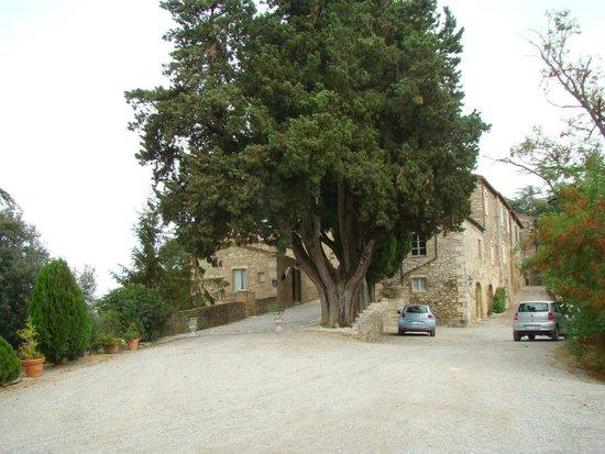 Hotel Toscana Laticastelli: Vista general