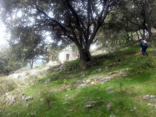 Ortigosa De Cameros, Spain: Subida hacia la primera cueva (entrada a la cueva)