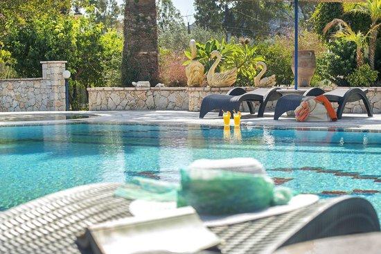 Elefteria Apartments: Pool area