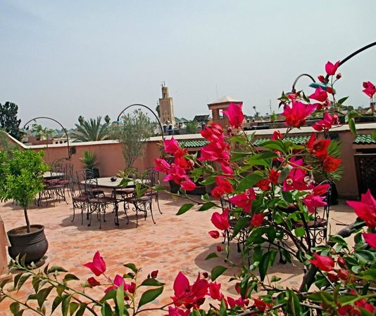 Riad Nasreen : The roof garden