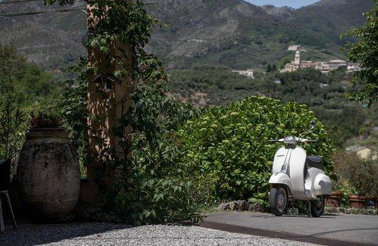 Agriturismo Villanova: Blick vom Anwesen